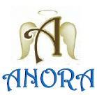 ANORA CONSULTANTS PTE. LTD.
