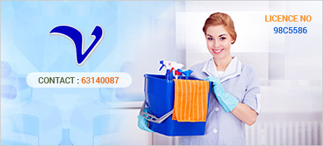 VALUE EMPLOYMENT SERVICES PTE LTD